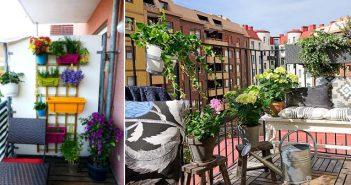 Cum sa iti decorezi casa cu plante verzi – trucuri de la specialistii in peisagistica