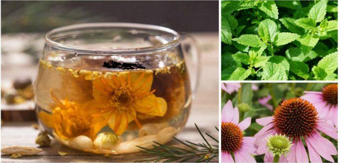 5 Ceaiuri medicinale pe care trebuie sa le ai mereu in casa