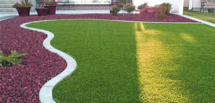 Cum alegi gazonul potrivit pentru grădina ta și cum îl întreții corect